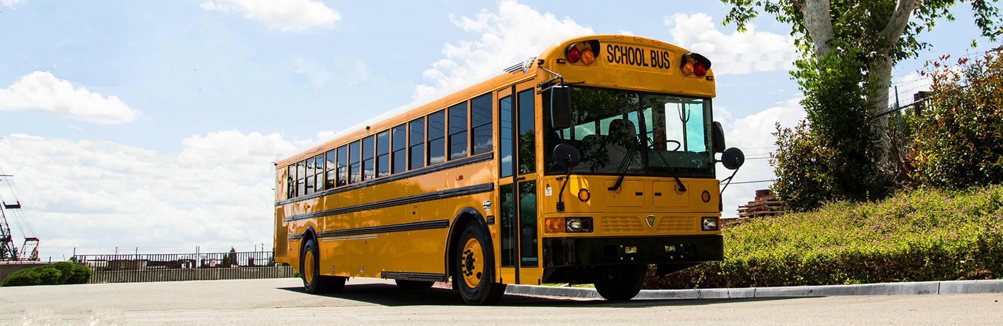 Type D School Bus