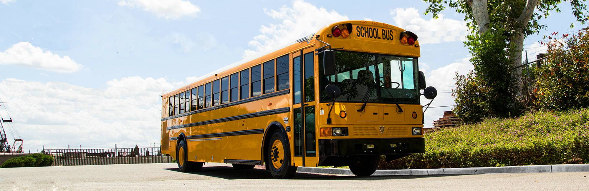 Type D School Bus